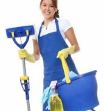 Professional Cleaners Created By  Posted By Fidelity Maid Service