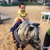 Pony Ride Created By Omar Blawni Posted By Blawni Events