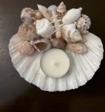 Handmade Shell Decor Created By Anastassiya Posted By The Hobby Room