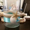 Sea Shell Hobby Created By Anastassiya Posted By The Hobby Room