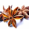 Dried Anise Fruits Created By  Posted By MounetBaytJedee