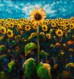 Sunflower Field Created By Raimondas Kucinas Posted By Maher & Valentino