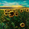 Sunflower Field Sunset Created By Raimondas Kucinas Posted By Maher & Valentino