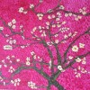 Almond Blossoms Created By Lekha Preeth Posted By Lekha Preeth
