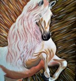 Horse Created By Stefka Hristova Posted By Stefka Hristova
