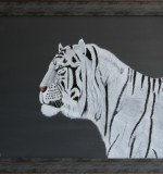 The White Tiger Created By Sajjan Posted By Sajjan Kumar Mittal