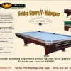 Qatar Collections 9 Ft Professional Golden Crown V Pool