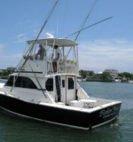38 ft Bertram Classic 350k Invested Boat Created By Bertram Posted By Al Omar Marine