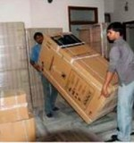 Professional Movers Created By Md Raqib Posted By Blue color company