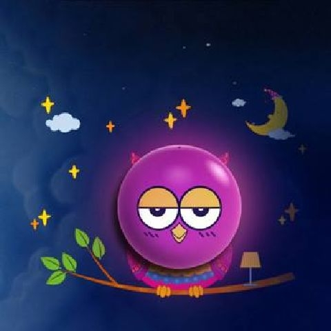 Goodnight, Owl Created By  Posted By Big N Small Wall Decals