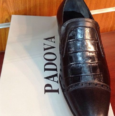 Italian Leather Created By  Posted By Padova