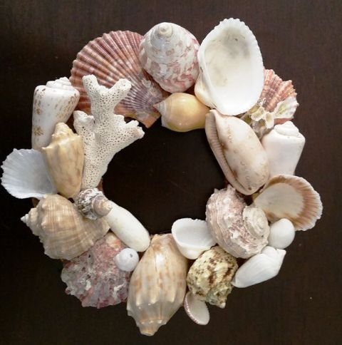 Sea Shells Wall Decor Created By Anastassiya Posted By The Hobby Room