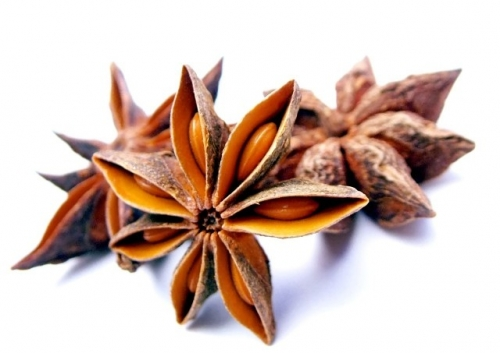 Dried Anise Fruits