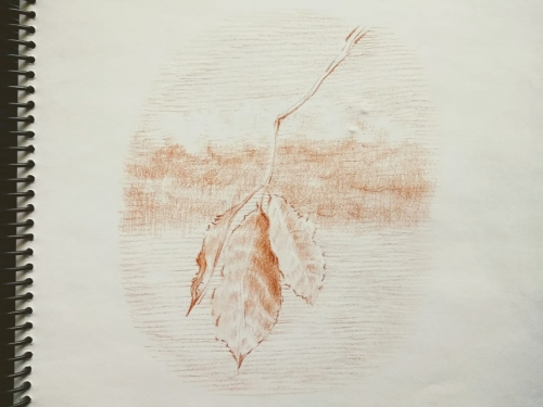 Leaf Created By Dante Posted By Dante