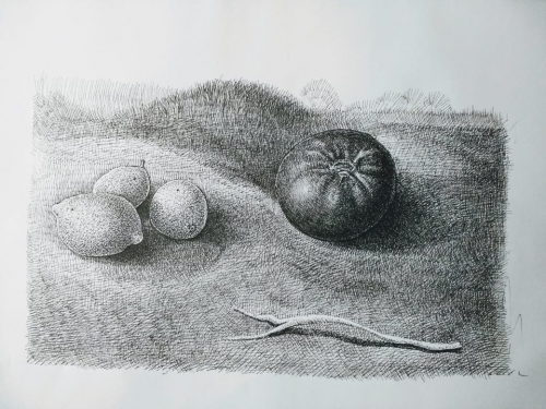 Chilean Fruits Created By Dante Posted By Dante