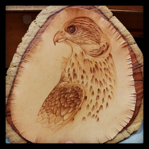 Falcon Pyrography Created By Wisam Posted By Al Sindan Pyrography