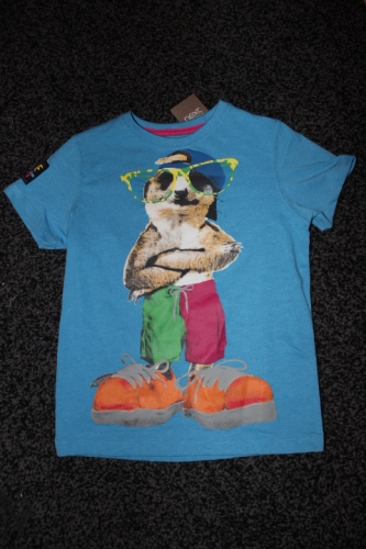 Boys T-shirt Created By Next UK Posted By Kids Fashion Qatar
