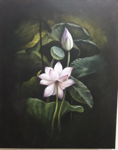 Lotus Created By Anil Posted By Anil kumar