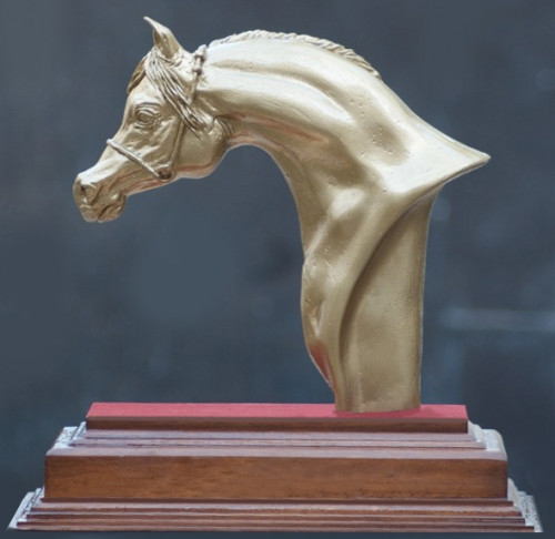 Show Horse Series Created By Prem Chokli Posted By PCollections